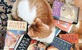 Laura Morley and the Harry Potter Books